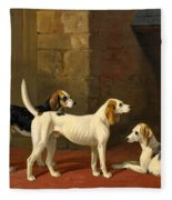 Three Fox Hounds In A Paved Kennel Yard Fleece Blanket