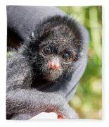 Three Month Old Spider Monkey Fleece Blanket