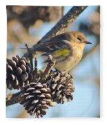 Three Pine Cones And A Little Bird Fleece Blanket