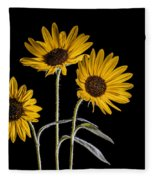 Three Sunflowers Light Painted On Black Fleece Blanket