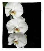 Three White Orchids Fleece Blanket