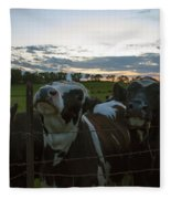 Three Wisconsin Maidens Fleece Blanket