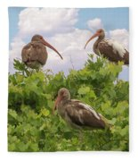 Three's A Crowd Fleece Blanket