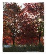 Through The Leaves Fleece Blanket