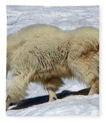Through The Snows Fleece Blanket