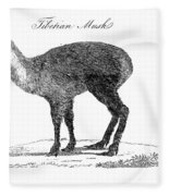 Tibetan Musk Deer Fleece Blanket