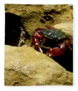 Tide Pool Crab 1 Fleece Blanket