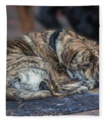 Tiger Dog And The Buskers Fleece Blanket