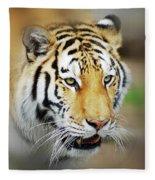 Tiger Eyes Fleece Blanket