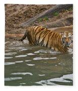 Tiger In The Water Fleece Blanket
