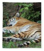Tiger- Lincoln Park Zoo Fleece Blanket