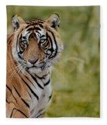 Tiger Look Fleece Blanket
