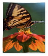 Tiger Swallowtail - 3 Fleece Blanket