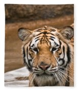 Tiger Wading Stream Fleece Blanket