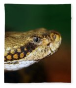 Timber Rattler Head On Fleece Blanket