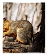 Time For A Peanut Fleece Blanket
