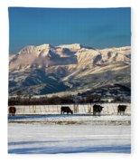 Timpanogos From The North Fields Fleece Blanket