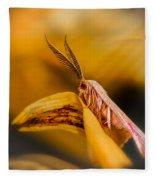 Tiny Butterfly Fleece Blanket