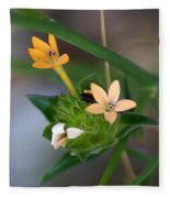 Tiny Flowers  Fleece Blanket