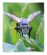 Tiny Fly Fleece Blanket