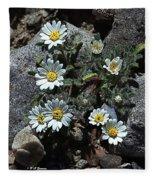 Tiny White Flowers In The Gravel Fleece Blanket