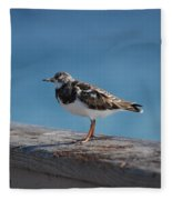 Tippi Hedren Fleece Blanket