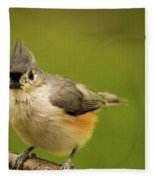 Titmouse Ready To Jump And Fly Fleece Blanket