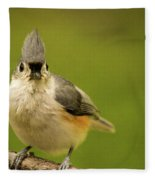 Titmouse Says Here Is Looking At You Fleece Blanket