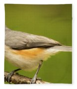 Titmouse With Bad Hairdo 3 Fleece Blanket