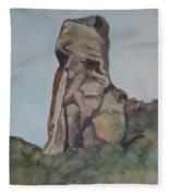Toad Rock Fleece Blanket