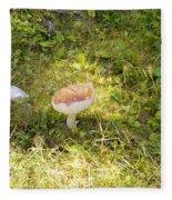 Toadstool Grows On A Forest Floor. Fleece Blanket