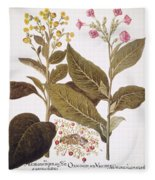 Tobacco Rustica, 1613 Fleece Blanket