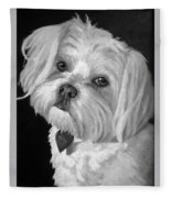 Toby Fleece Blanket