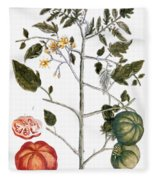Tomato Plant, 1735 Fleece Blanket