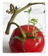 Tomato Seedlings Sprouting Fleece Blanket