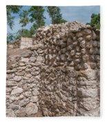 Tombs At Oxtankah Fleece Blanket