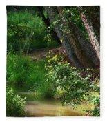 Toms Creek In Late Summer Fleece Blanket