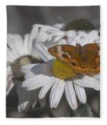 Topsail Butterfly Fleece Blanket