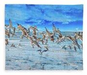Topsail Skimmers Fleece Blanket