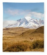Torres Del Paine Fleece Blanket