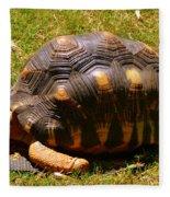 Tortoise Fleece Blanket