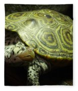 Turtle With A Tale To Tell Fleece Blanket
