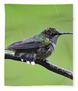 Totally Wet But Beautiful - Ruby-throated Hummingbird Fleece Blanket