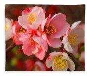 Toyo-nishiki Quince Blooms Fleece Blanket