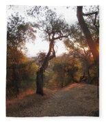 Trail At Sunrise Fleece Blanket