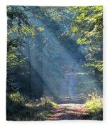 Trail In Morning Light Fleece Blanket