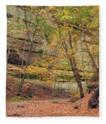 Trail In Tonty Canyon Fleece Blanket