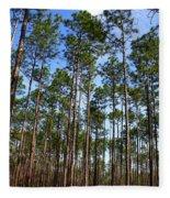 Trail Through The Pine Forest Fleece Blanket