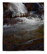 Trail To Tokopah Falls Fleece Blanket