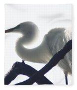 Translucent Fleece Blanket